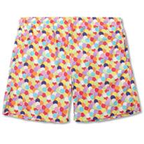 spot swim shorts