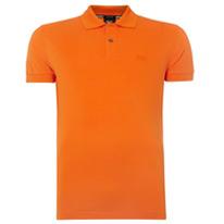 firenze shirts