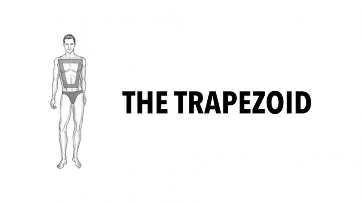 trapezoid body type