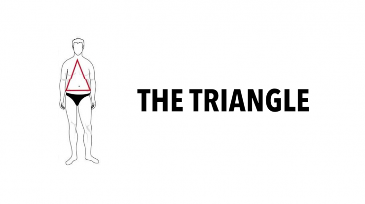 triangle body type
